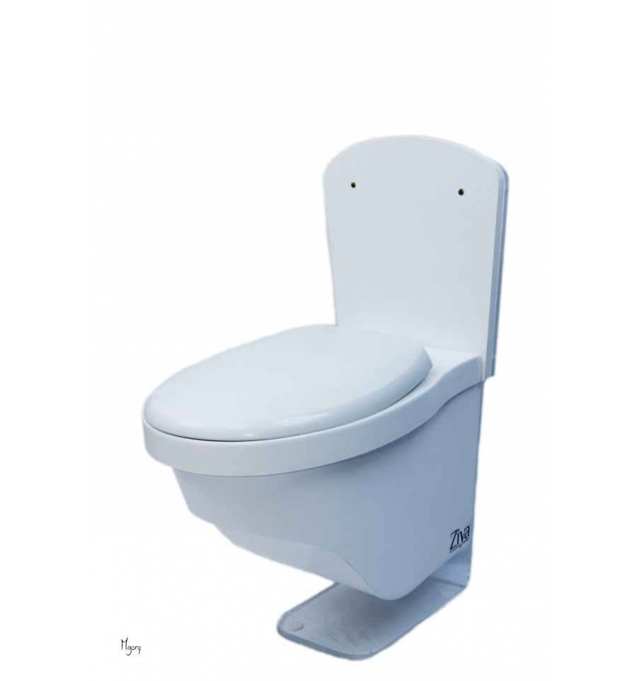 toilette ziya clean suspendu. Black Bedroom Furniture Sets. Home Design Ideas